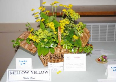 Flower Show - IMGP0610