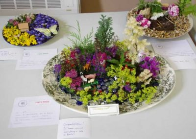 Flower Show - IMGP0631