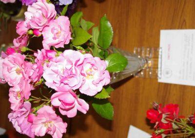 Flower Show - IMGP0835