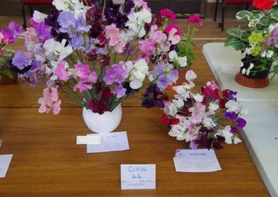 Flower Show - IMGP0839