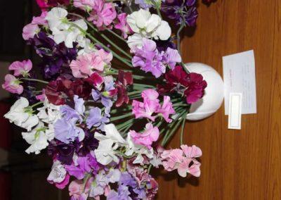 Flower Show - IMGP0841