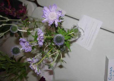 Flower Show - IMGP0862