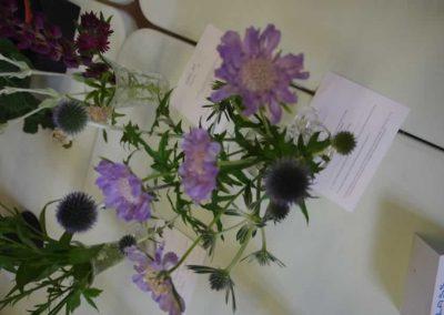 Flower Show - IMGP0867