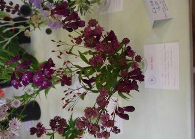 Flower Show - IMGP0868