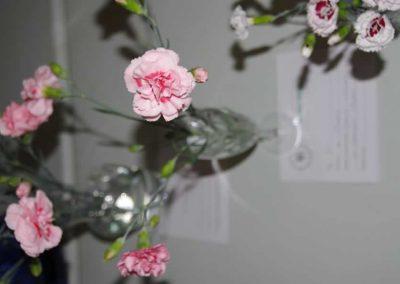 Flower Show - IMGP0881