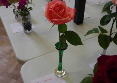 Flower Show - IMGP0906