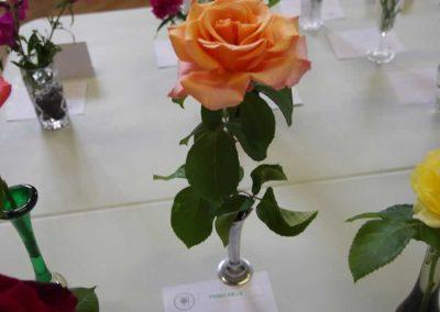 Flower Show - IMGP0907