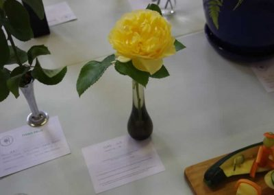 Flower Show - IMGP0908