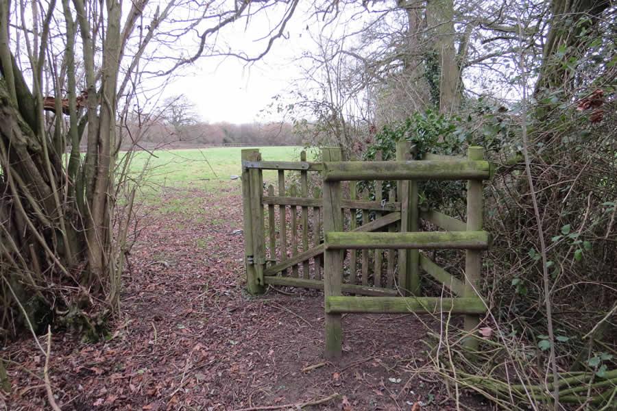 Walk 1 - Wickhambrook