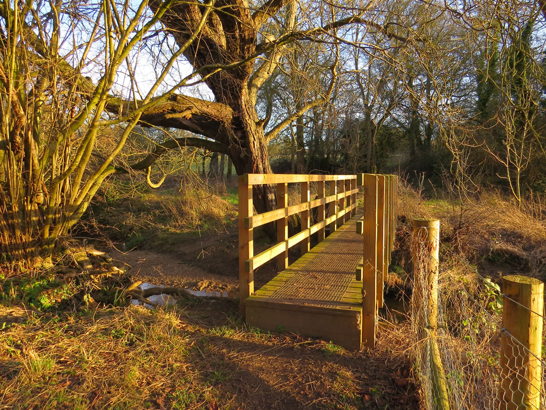 Walk 15 - Stansfield 1