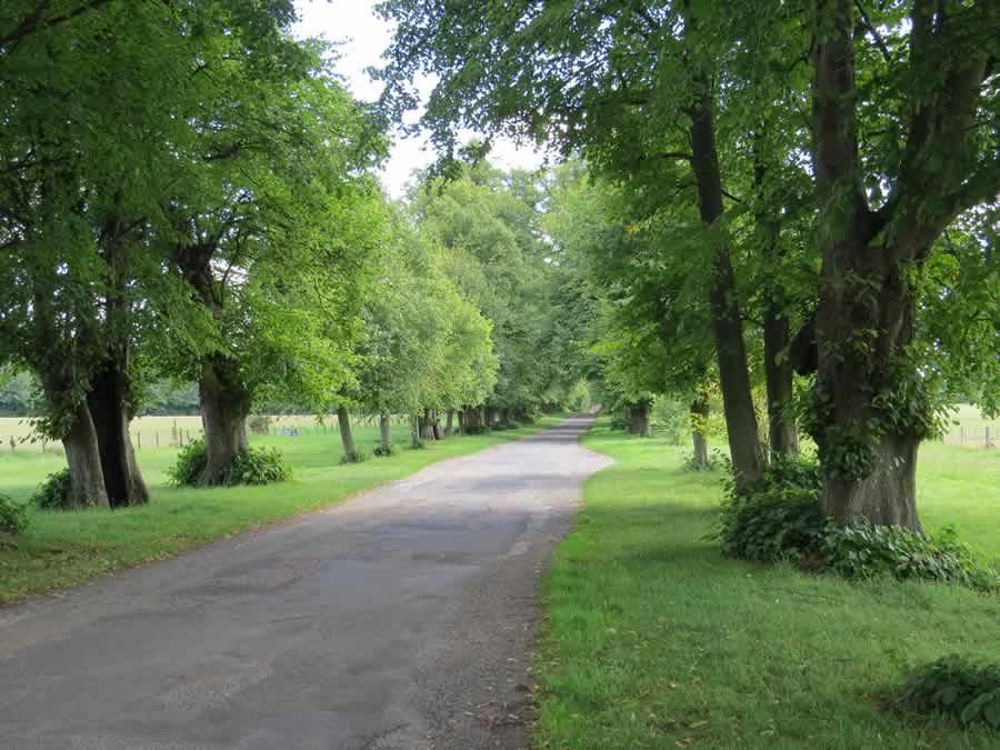 Walk 23 - Stanstead